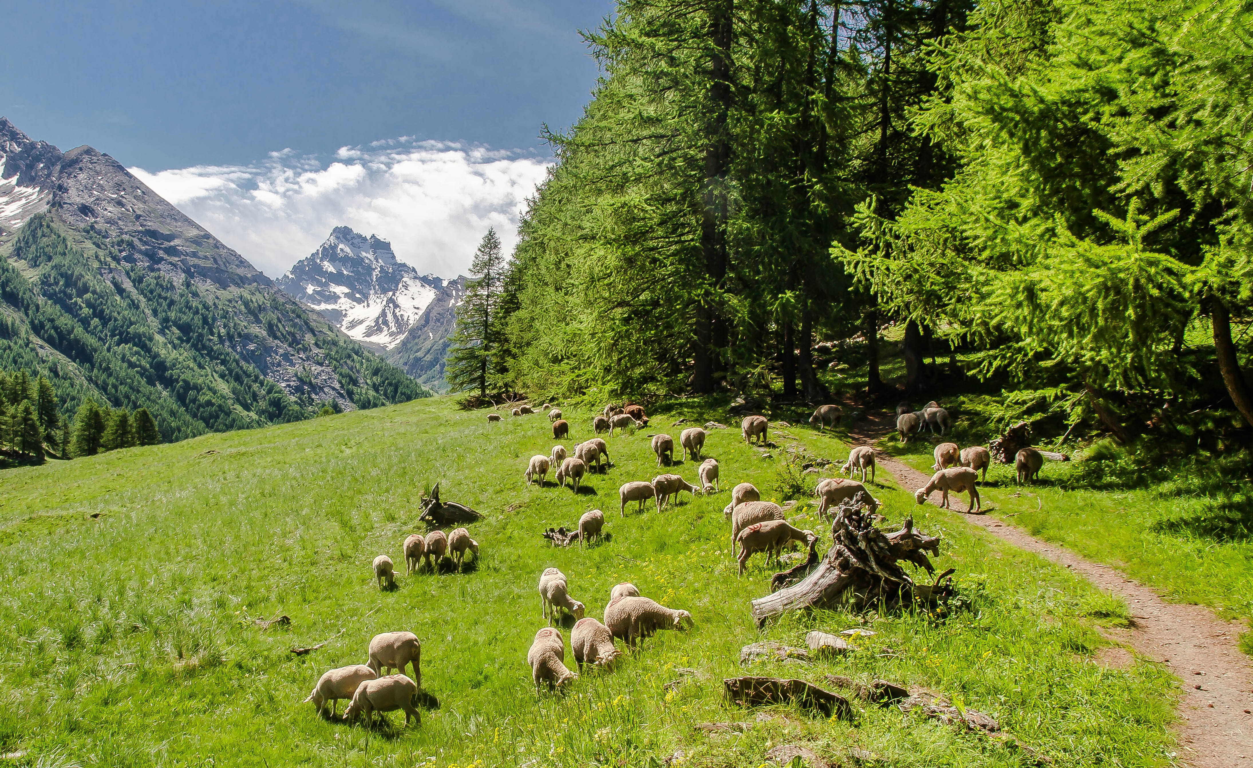 Hautes alpes d couverte des temps forts du guillestrois - Office du tourisme molines en queyras ...