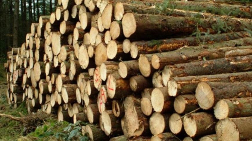 Alpes de Haute-Provence : du bois de chauffage attribué par tirage au sort à Digne les Bains