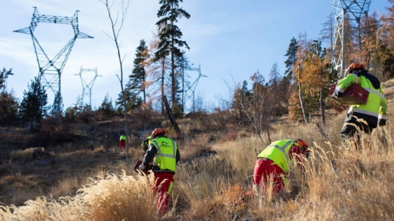 Hautes alpes le chantier rte haute durance dynamise l 39 emploi for Haute durance