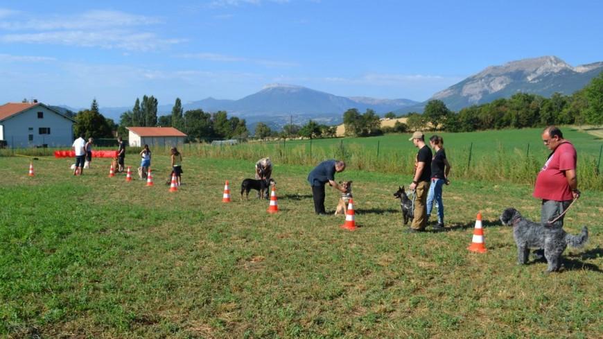 Hautes-Alpes : elle crée une première française dans la prévention canine