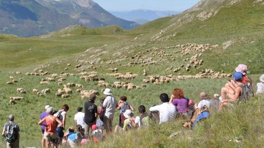 Alpes du Sud : à ne pas manquer, ce week-end