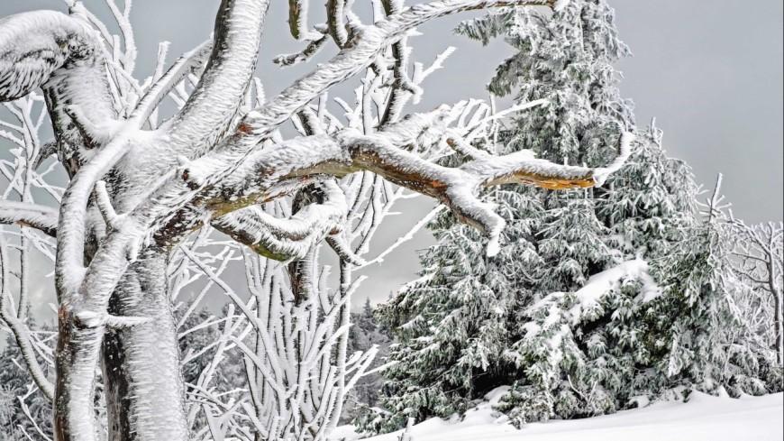 Alpes du sud la neige s 39 invite pour les saints de glace - Les saintes glaces 2017 ...