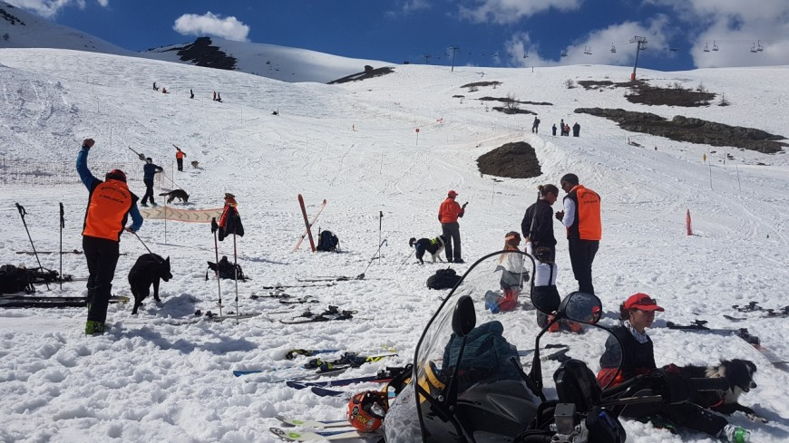 Hautes-Alpes : 35 bougies soufflées à Puy Saint Vincent pour l'association des maitres chiens en avalanches