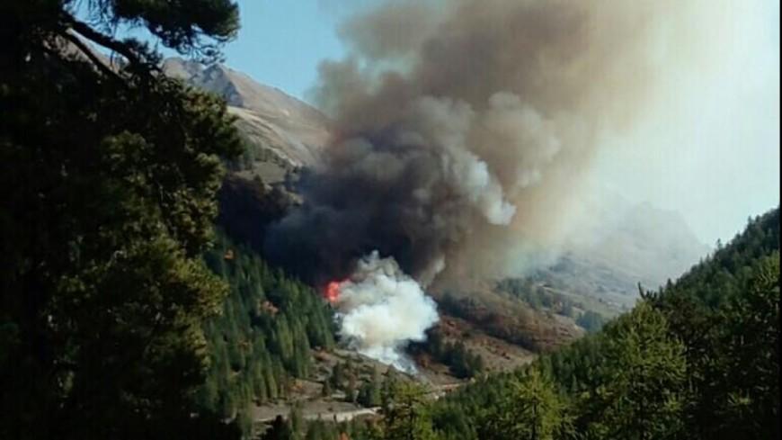 Alpes de Haute-Provence : un incendie dévaste 50 ha de résineux à Val d'Oronaye