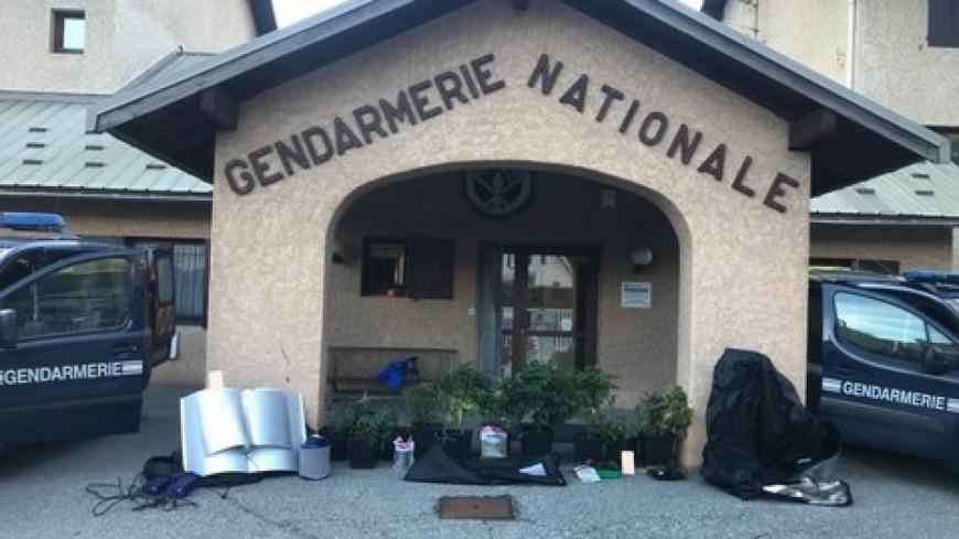 Hautes-Alpes : une culture de cannabis dans un logement de Vallouise