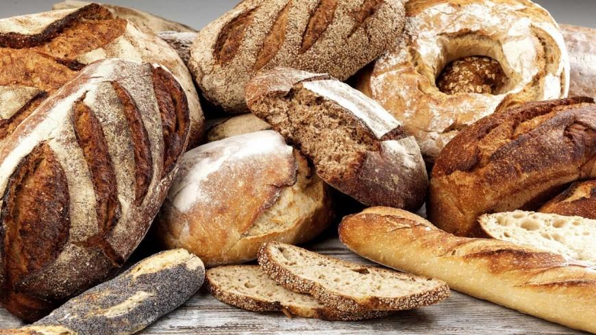 Hautes-Alpes : le festival des fours à pains Sonores à La Joue du Loup