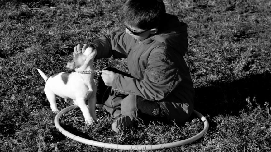 Hautes-Alpes : et si votre enfant apprenait les bons gestes à avoir avec son chien ?