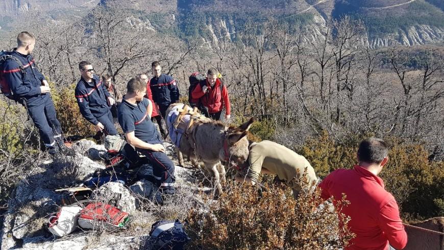 Hautes-Alpes : les pompiers sauvent un âne bloqué dans un éperon rocheux