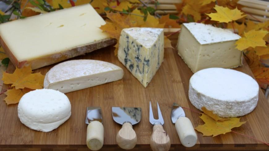 Hautes-Alpes : le Bleu du Queyras en marche vers une labellisation