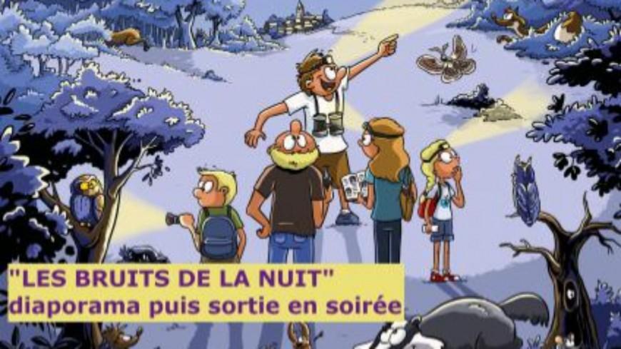 Hautes-Alpes : à la découverte des animaux de la nuit ce samedi au Casset