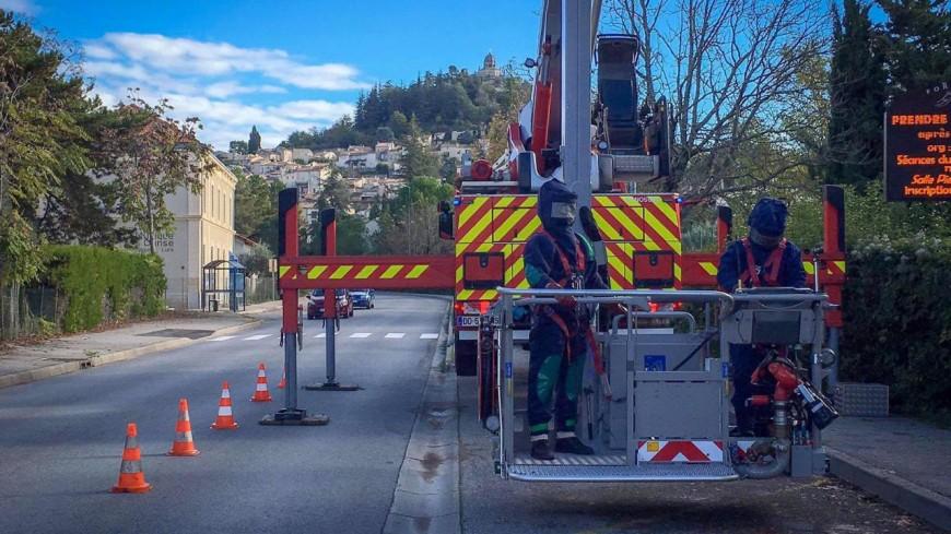 Alpes de Haute-Provence : les destructions de nids d'hyménoptères sont désormais facturées par les pompiers