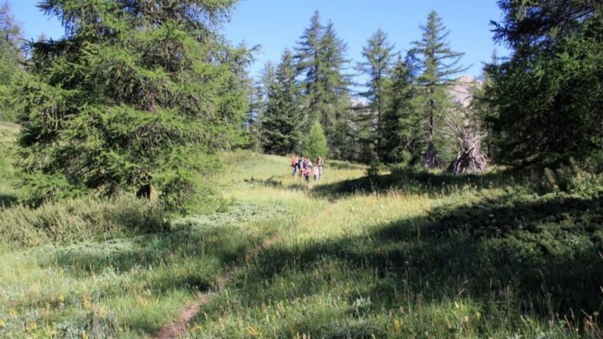 Alpes de Haute Provence : Allos célèbre la nature durant trois jours