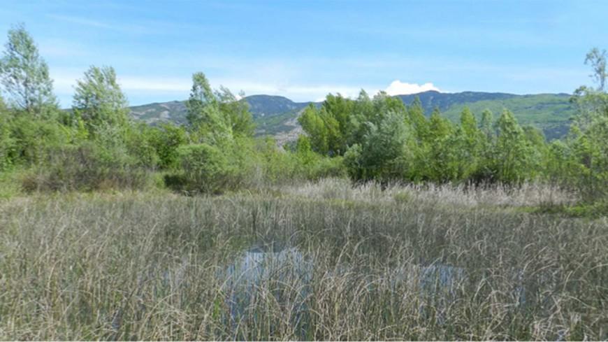 Hautes-Alpes : l'espace naturel des Piles a été labellisé Refuge LPO
