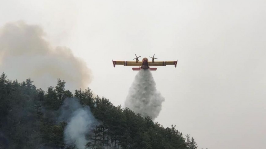 Alpes de Haute-Provence :  le feu de forêt à Moriez  a été maîtrisé