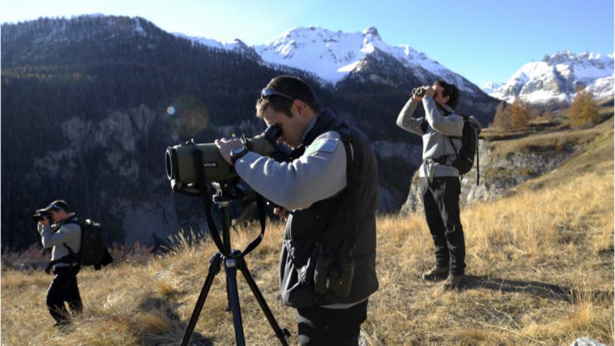 Alpes du Sud : inquiétude au sein du Parc national des Écrins