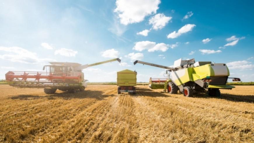 Alpes du Sud : les Chambres d'Agriculture vent debout contre le projet de loi de finances 2020