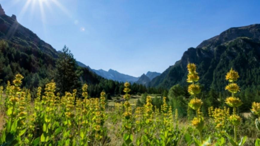 Hautes-Alpes : les paysages du Queyras à l'honneur lors d'une expo photos