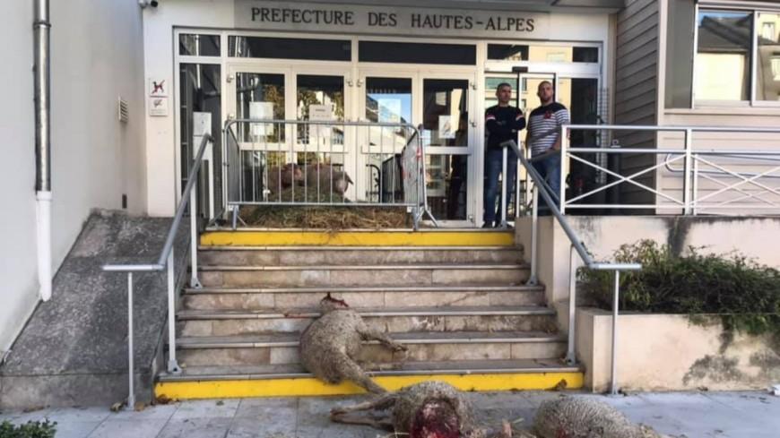 Hautes Alpes : opération coup de poing des Jeunes Agriculteurs 05 à Gap