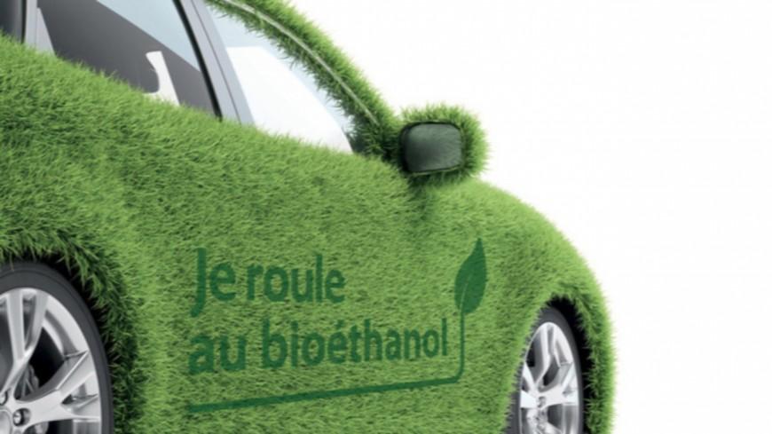 Région : quand économie et écologie font bon ménage