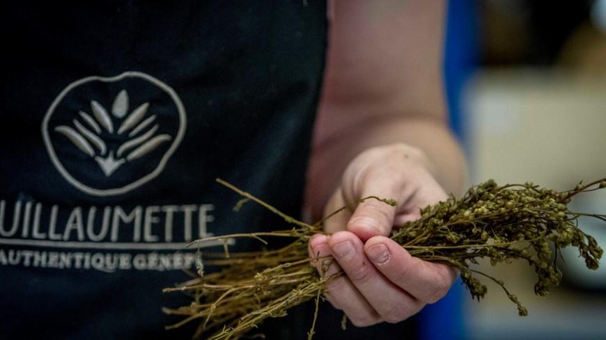 Hautes Alpes : enfin de l'or au Concours Général Agricole 2020