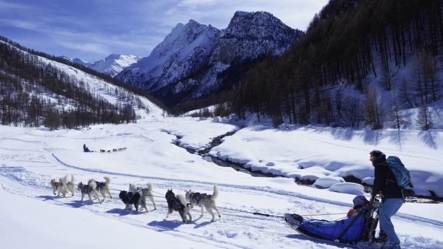 Hautes Alpes : les chiens de traineaux à l'honneur dans le Queyras