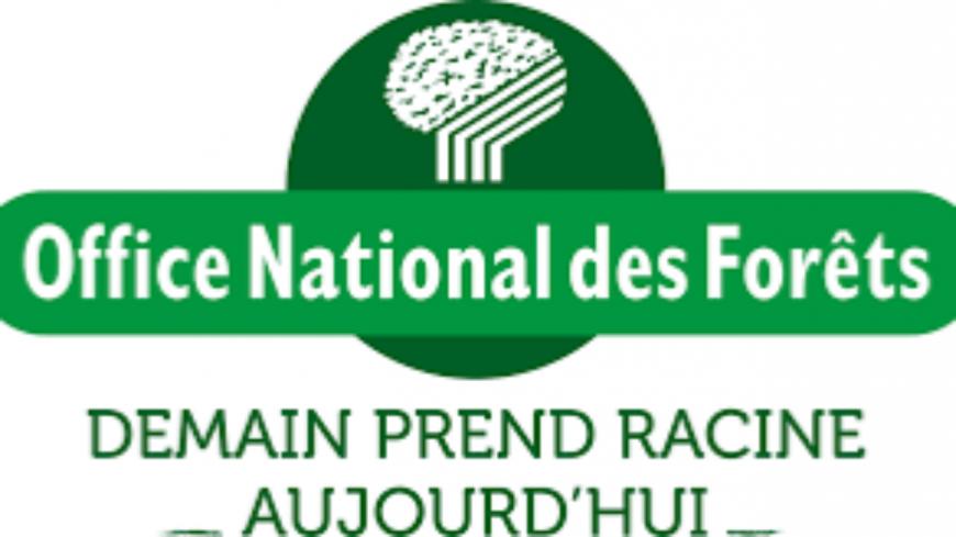 """Région Sud : Du 17 juillet au 4 septembre 2020 inclus, l'Office national des forêts (ONF) organise le concours photo """"Un été en forêt""""."""