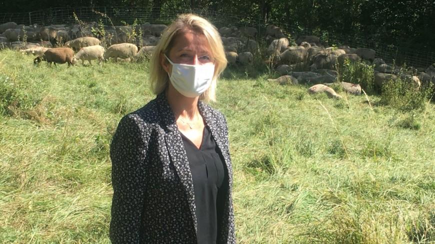 Hautes Alpes : la Ministre de la Transition écologique s'acclimate au sujet épineux du loup