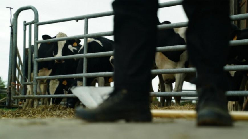 Hautes-Alpes : suicide des agriculteurs, J.M Arnaud souhaite que l'État apporte une réponse à « ce drame silencieux »