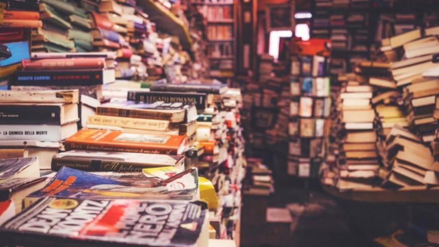 Alpes de Haute-Provence : deux librairies aidées dans le cadre du Plan de relance