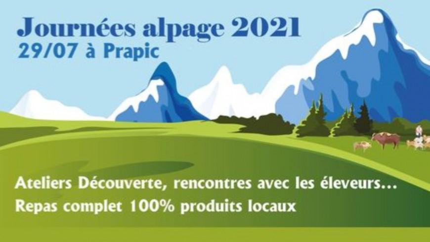 Hautes-Alpes : l'alpage se découvre dans le Parpaillon et à Prapic