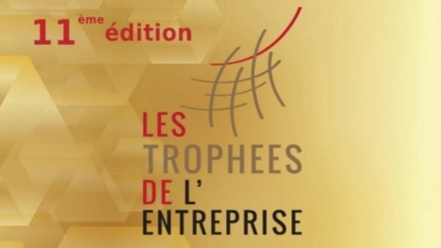Hautes-Alpes : l'excellence économique via les réseaux numériques