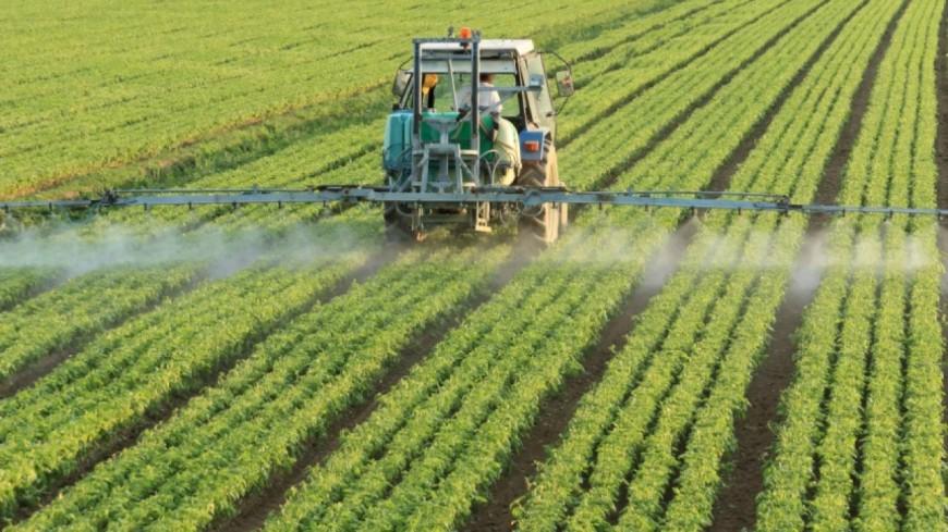 Hautes-Alpes : des rassemblements anti-pesticides organisés dans plusieurs communes du département