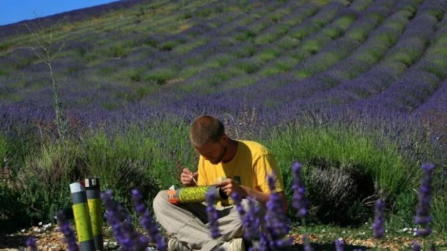 Alpes de Haute-Provence : Provence rimera t-elle encore demain avec lavande ?