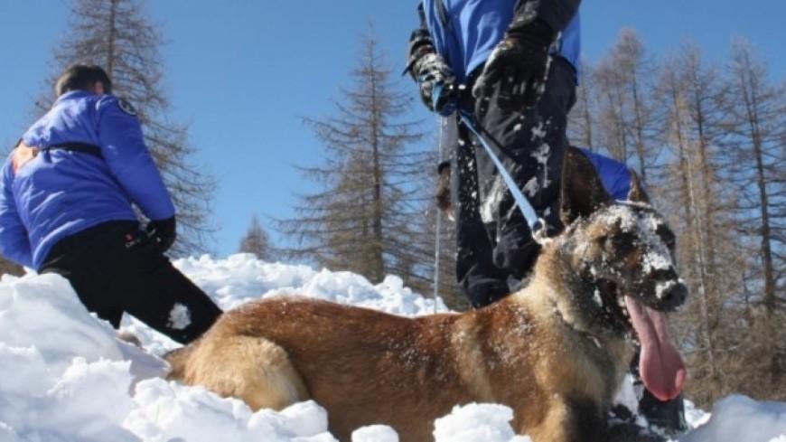 Alpes de Haute-Provence : le PGHM de Jausiers et la SAG de Digne mobilisés pour une avalanche