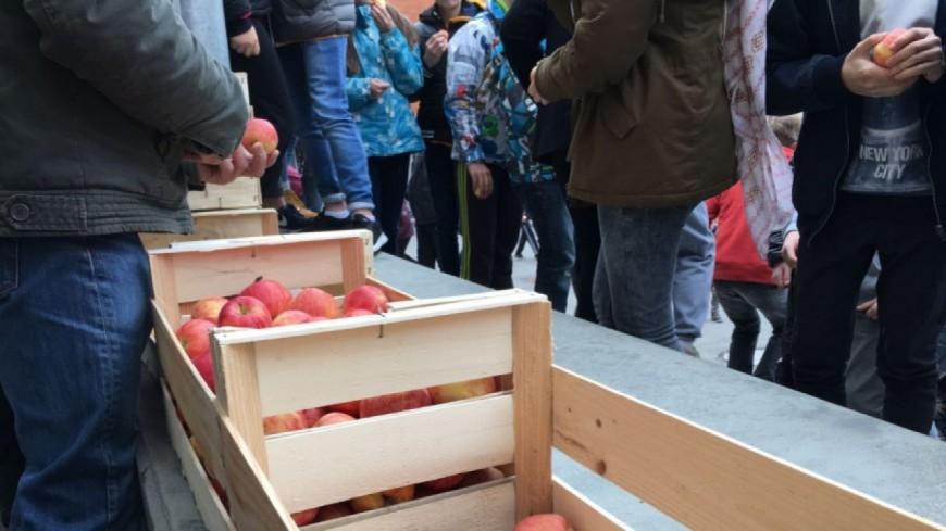 Hautes-Alpes : des pommes distribuées aux collégiens