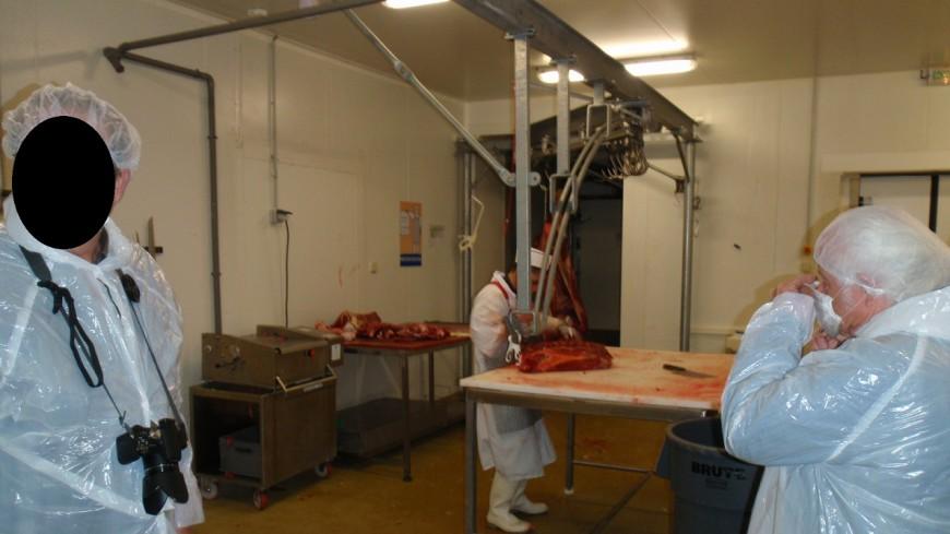 Alpes de Haute-Provence : la Confédération Paysanne amène le dossier des abattoirs sur le bureau du préfet