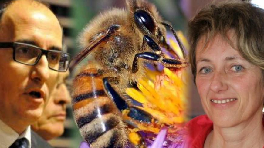 Alpes du Sud : le Sénat reporte l'interdiction des « pesticides tueurs d'abeilles », qu'ont voté vos sénateurs ?