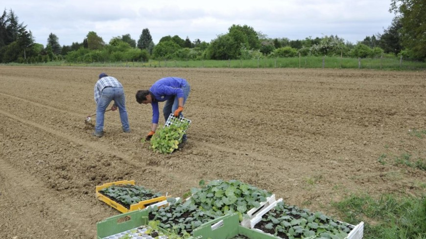Hautes-Alpes : les syndicats agricoles mobilisés lundi devant la préfecture