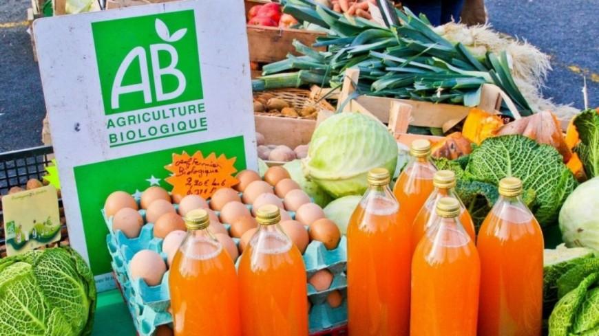 Alpes du Sud : agriculture bio, l'État se désengage des aides au maintien et renvoie la balle aux Régions