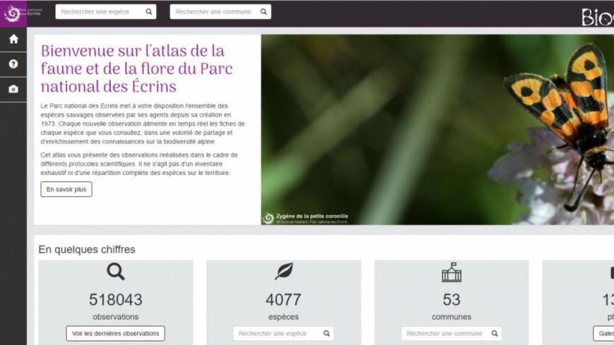 Hautes-Alpes : un atlas en ligne sur la biodiversité dans les Ecrins