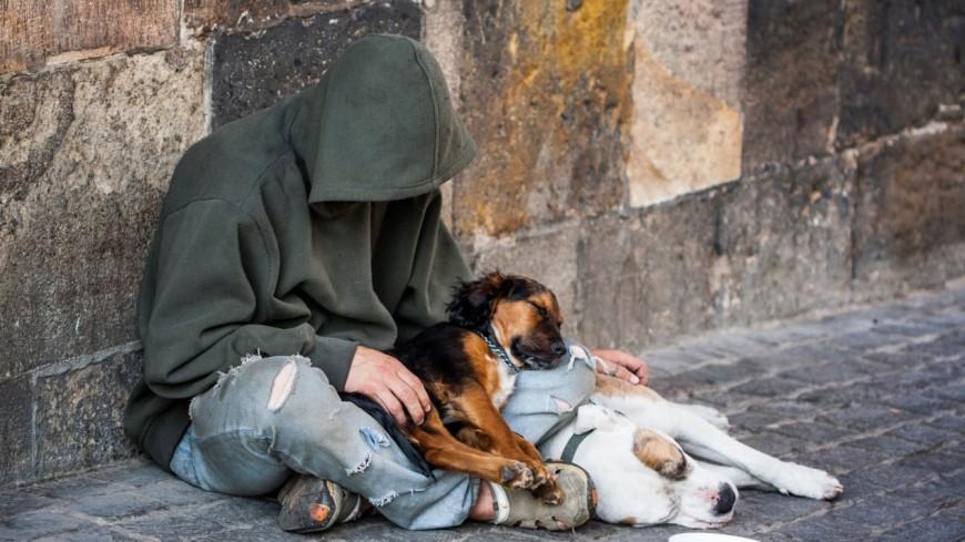 Alpes de Haute-Provence : une pétition pour permettre à un SDF manosquin d'être hébergé avec son chien