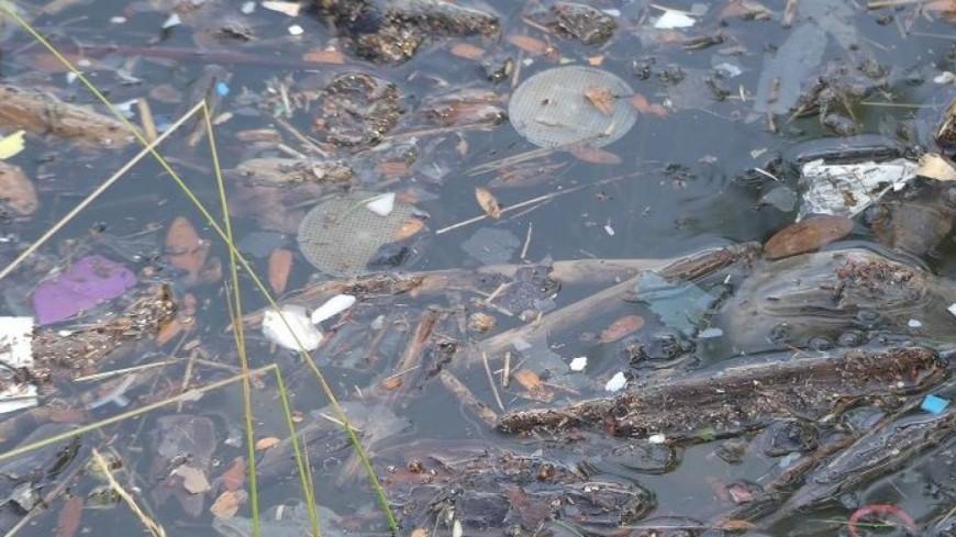 Alpes du Sud : 11.000 litres de déchets ramassés sur le lac de Serre-Ponçon