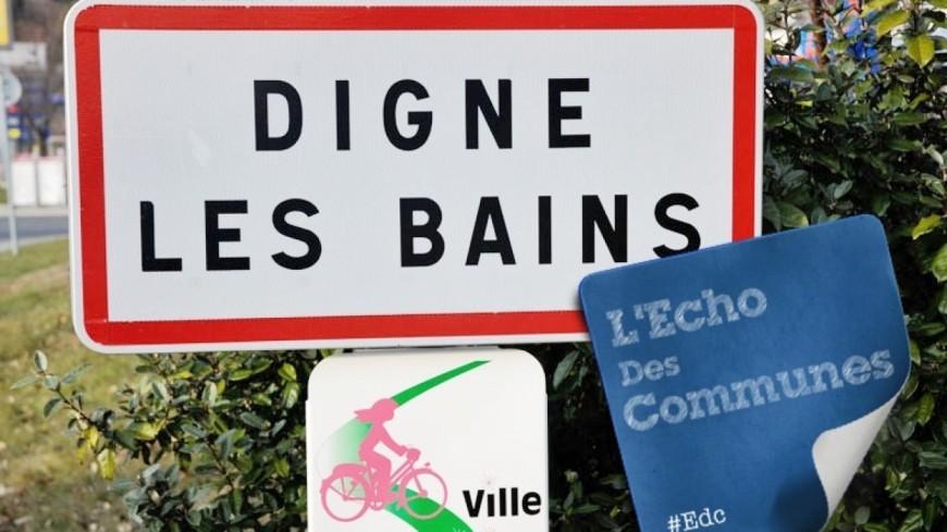 Alpes de Haute-Provence : témoignages à travers le temps au Musée de la lavande