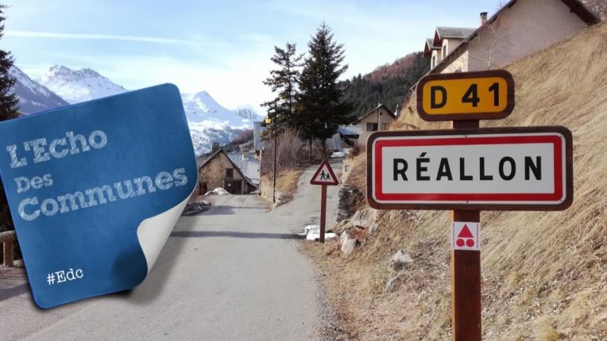 Hautes-Alpes : un couple d'aigle royal a élu domicile à Réallon
