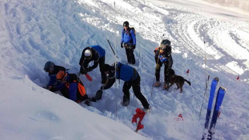 Alpes de Haute-Provence : en avalanche, le chien parcourt 1 hectare en 20 minutes