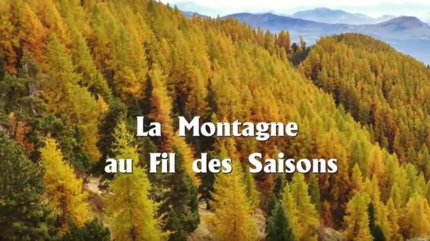 Hautes-Alpes : un film sublime les saisons en montagne