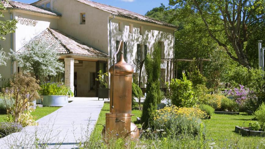 Alpes de Haute-Provence : Florame, un institut des huiles essentielles qui  se visite