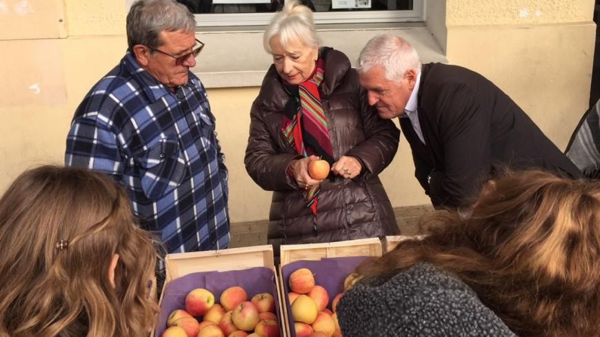 Hautes-Alpes : un fruit à la récré, six tonnes de pommes distribuées