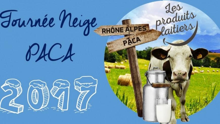 Alpes du Sud : dégustations de produits laitiers au pied des pistes