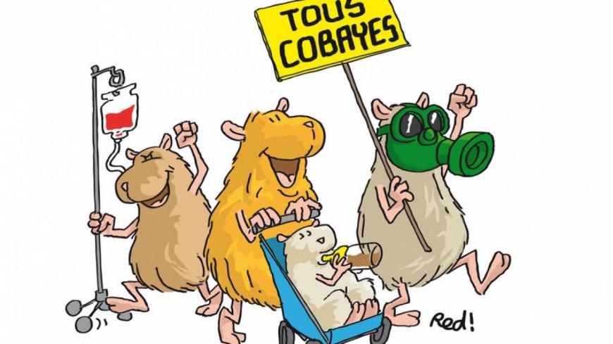 Alpes de Haute-Provence : la marche des « Cobayes » contre les lobbys